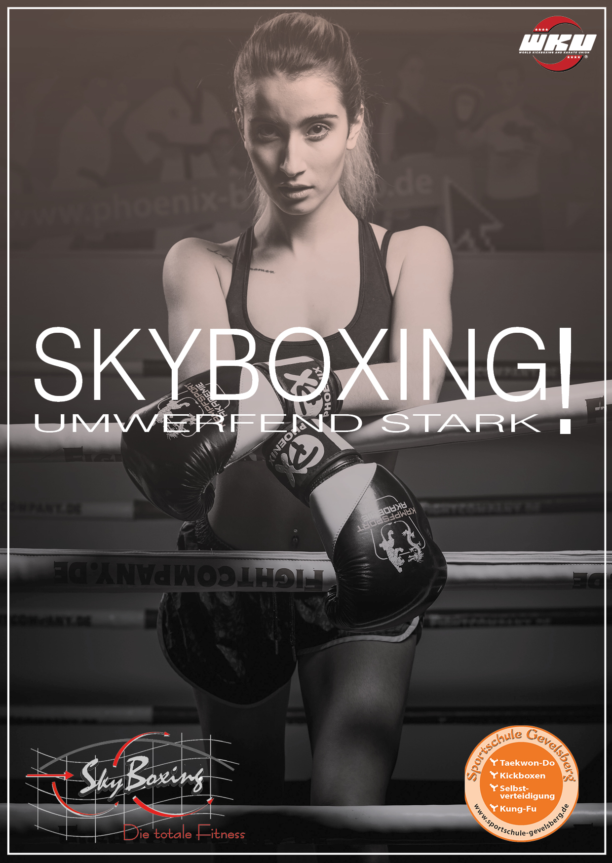 Skyboxing 10012